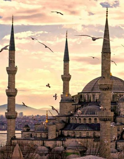 the-guide-turk-trips-2